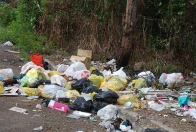 Cúmulo de basura afecta barrios de Santiago: