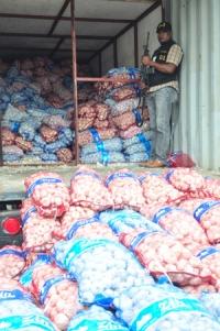 Decomisan 13 toneladas de Ajo en Vicente Noble: