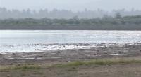Laguna Cabral o Rincón a punto de desaparecer por sequía: