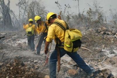 Ministerio de Medio Ambiente extingue dos fuegos en La Vega: