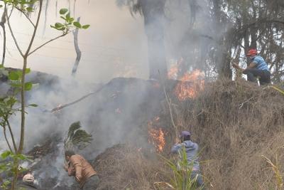 Apresan y somete a la justicia responsable fuegos en Manabao: