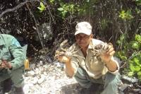 Técnicos de Medioambiente muestran la especie incauta por miembros de SENPA.