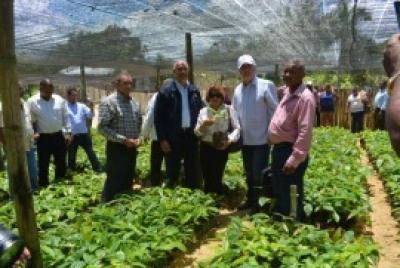 IAD y FAO entregan vivero de cacao hibrido en Hato Mayor