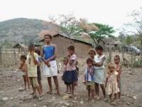 Niñas y niños en condiciones de indigencia conviven sin esperanza en El Naranjo.