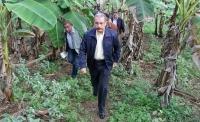 Presidente Danilo Medina anuncia respaldo a plataneros en Tamayo: