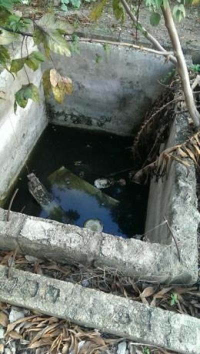 Denuncian criadero mosquitos en vivienda cerca de donde murió joven por dengue: